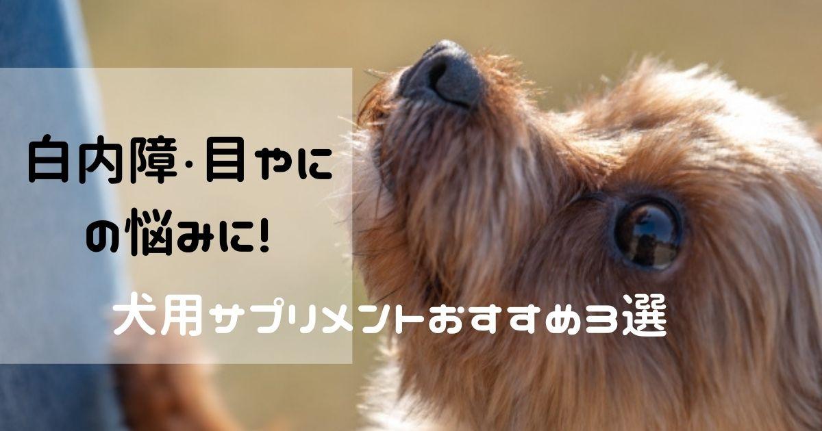 犬用サプリメント